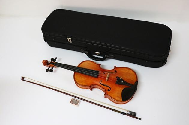 H1A 小提琴Venus虎背紋(高級) 1