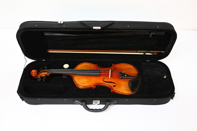H1A 小提琴Venus虎背紋(高級) 5