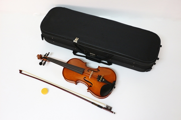 H1B 小提琴Venus虎背紋(仿古) 1
