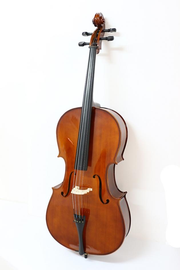 H25B 大提琴附袋(素面) 1